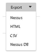 nessus test applications web audit test intrusion rapport